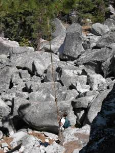 pruning pole yosemite