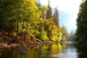 Yosemite River 16x24